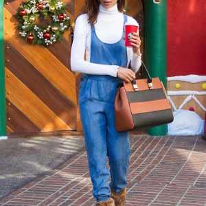 Shoedazzle Chambray Overalls